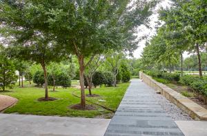 Blue Cross Blue Shield Tree Walkway